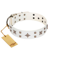"""Starry Heaven"" Designer Handcrafted FDT Artisan White Leather Labrador Collar with Stars and Studs"