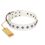 """Snowy Day"" Stylish FDT Artisan White Leather Labrador Collar with Small Dotted Pyramids"
