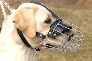 Basket Wire Dog Muzzle Light For Labrador