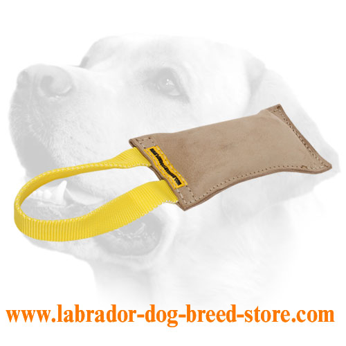Professional Training Leather Labrador Bite Tug