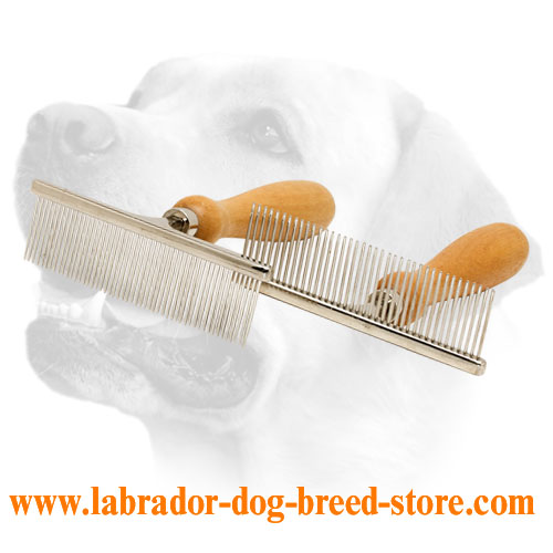 Chrome-Plated Metal Labrador Brush With Wooden Handle
