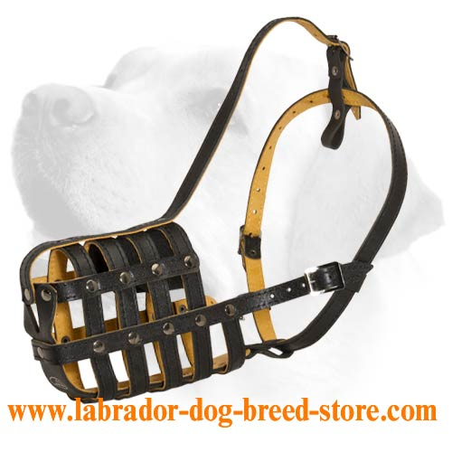 Flexy Everyday Leather Muzzle For Labrador