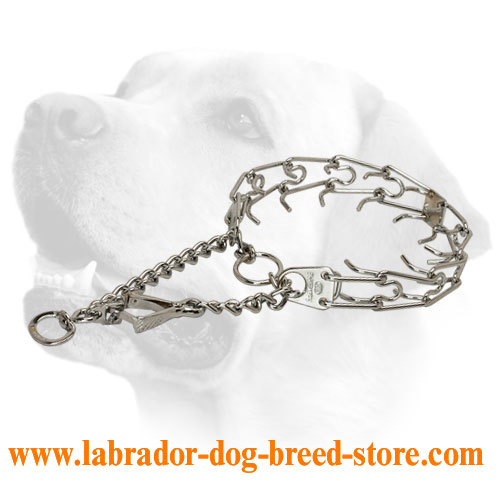 Chrome plated steel dog pinch collar with swivel and small snap hook - 50146 (02) 1/6 inch (3.9 mm)