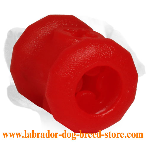 Small Size Fire Plug Dog Toy for Chewing