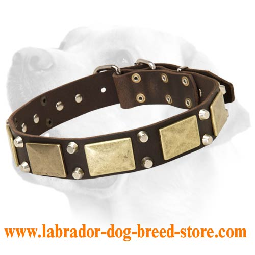 Handcrafted leather Labrador dog collar