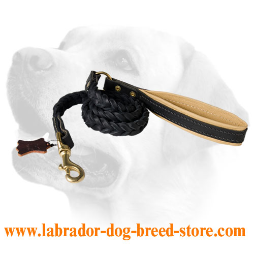 Lovely Plaited Leather Lead For Labrador