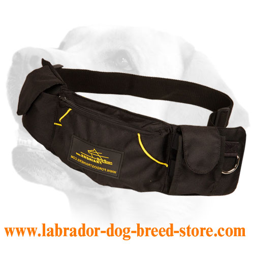 'Swift Reward' Dog Training Pouch for Toys and Treats for Labrador