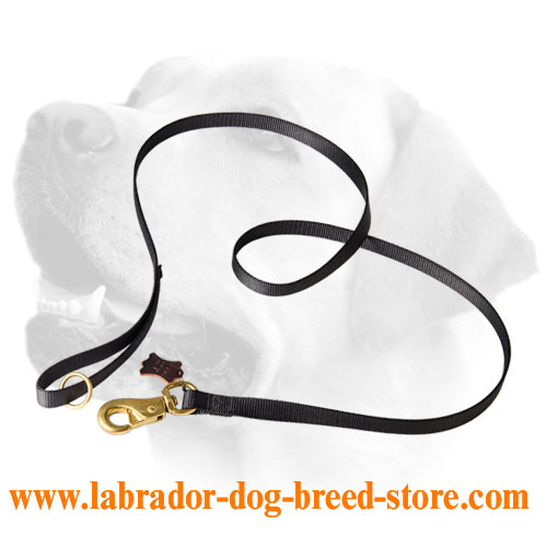 Extreme walking Labrador leash with Strong brass snap hook