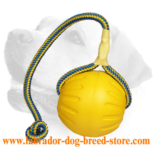 Strong Foam Ball on Nylon Rope - 3.5 inch (9 cm)