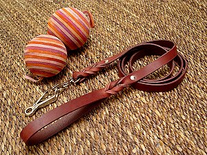 Handcrafted leather dog leash with quick release snap hook for Labrador
