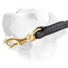 Brass Snap Hook On Leather Labrador Leash