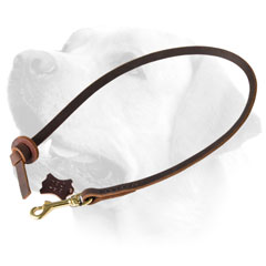 ObedienceTraining Leather Dog Leash For Labrador