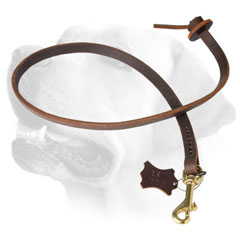 Short Leather Dog Leash For Labrador
