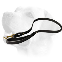 Leather Dog Leash For Labrador  Tracking