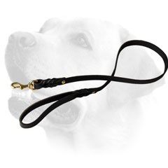 Riveted Leather Dog Leash For Labrador