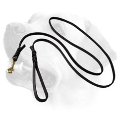 Braided Leather Dog Leash For Labrador