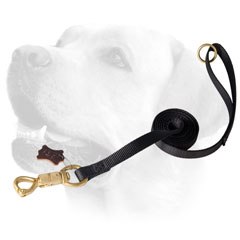 Tracking Nylon Dog Leash Labrador