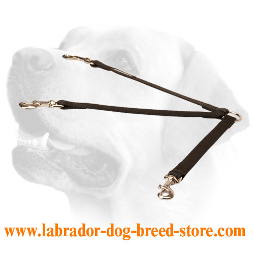 Stitched coupler Labrador leash for 3 dogs handling