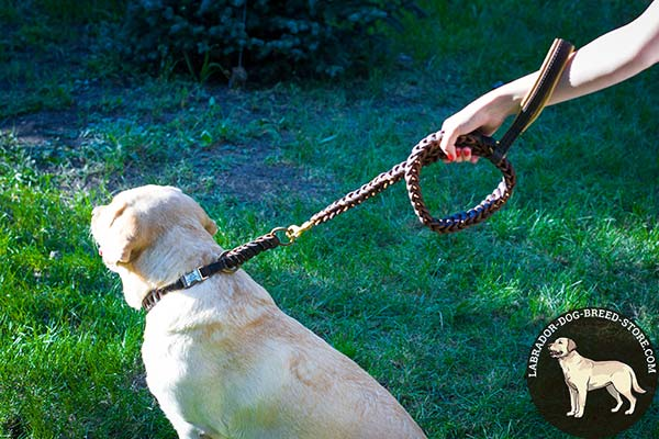 Labrador leather leash with rust-proof brass plated hardware for walking