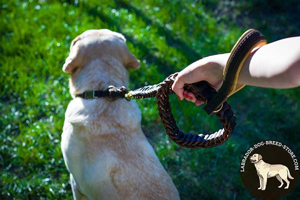 Labrador leather leash with strong hardware for any activity