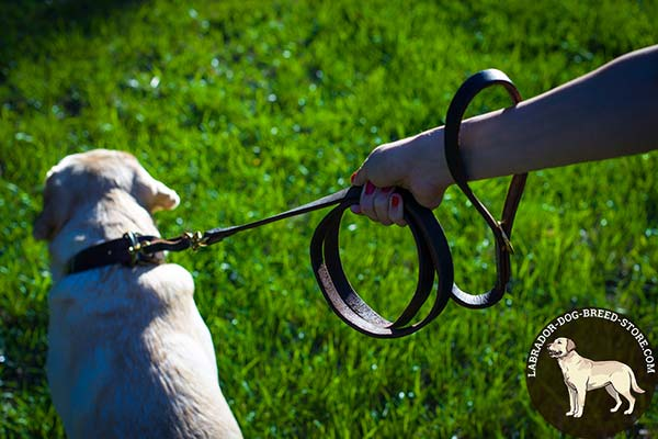 Labrador leather leash with non-corrosive hardware for daily activity