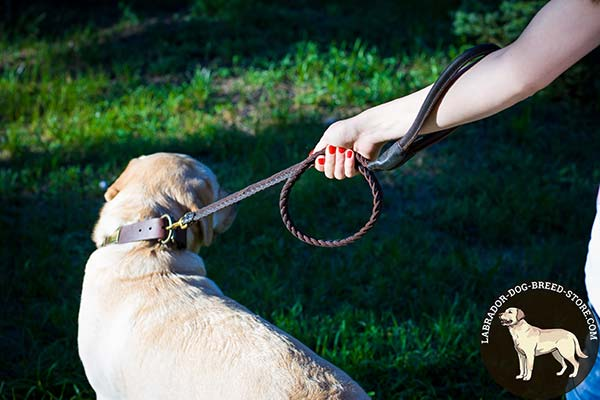 Labrador leather leash with reliable brass plated hardware for any activity