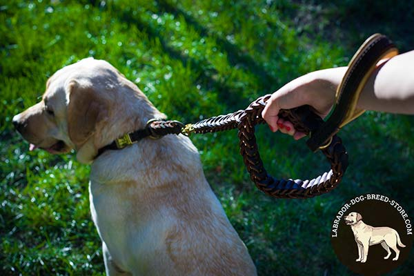 Labrador leather leash of braided design brass plated hardware for any activity