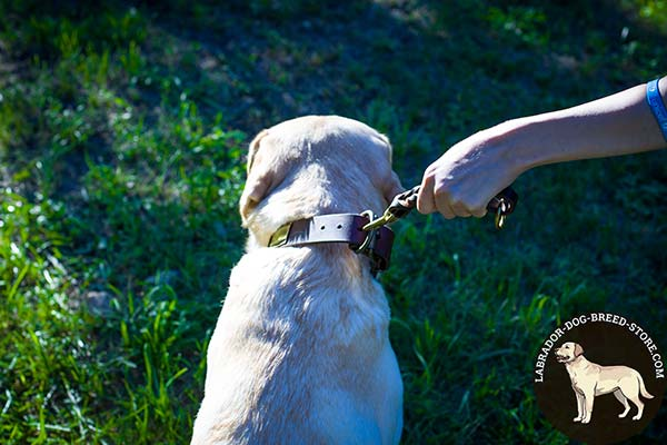 Labrador leather leash of genuine materials with handle for improved control