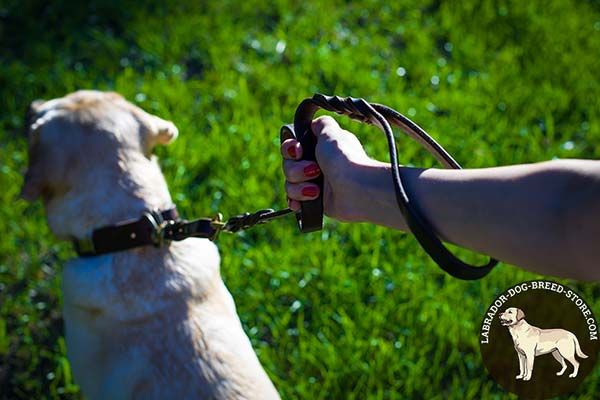 Labrador leather leash of lightweight material with brass plated hardware for daily walks