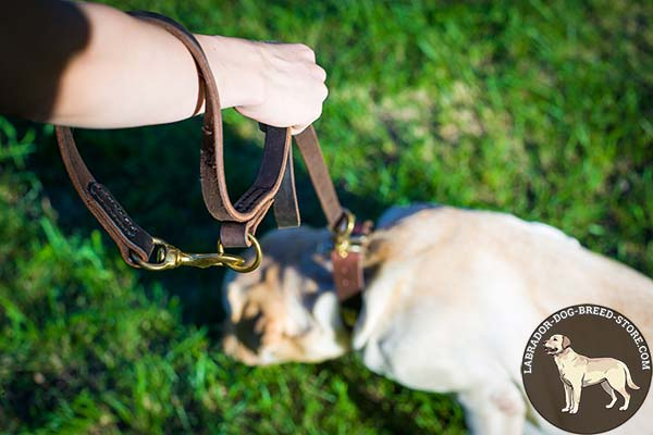 Labrador leather leash with strong hardware for daily activity