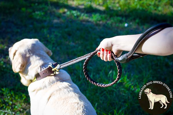 Labrador leather leash of braided design with handle for daily walks