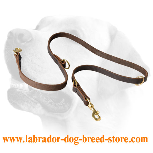 Multifunctional leather leash for Labrador