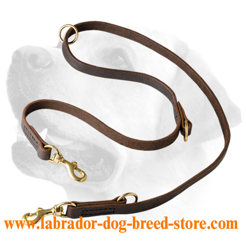 Leather Labrador leash with special 3 rings