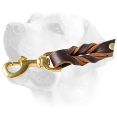 Snap Hook On Leather Dog Leash For Labrador