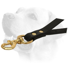 Brass Snap Hook On Leather Dog Leash For Labrador