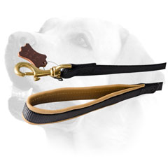 Brass Snap Hook On Nylon Dog Leash For Labrador