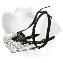 Muzzle With Wire Rust Resistant Frame