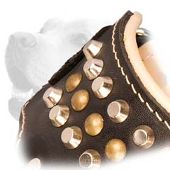 Exquisite Leather Studded Muzzle