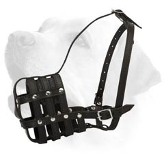 Labrador Leather Buckled Muzzle with Perfect Air  Ventilation