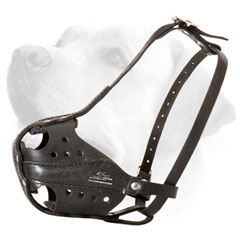Lightweight Dog Muzzle For Labrador