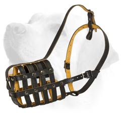 Leather Basket Muzzle For Labrador