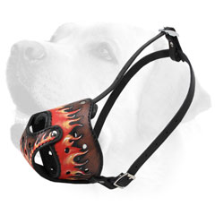 Obedience Training Leather Labrador Muzzle With Unique Design