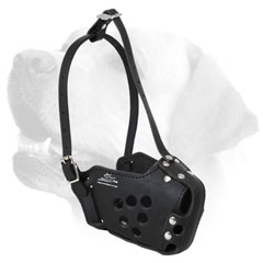 Attack Training Leather Dog Muzzle For Labrador title=