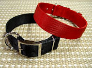 Nylon Dog Collar- 2 Ply Nylon :Nickel Plated : Extra Wide